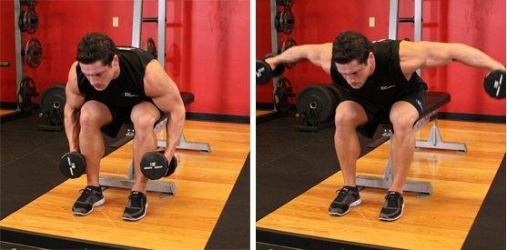 deltoides posterior ejercicio